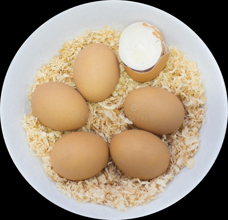 A Six brown eggs on brown Sawdust with one being crack egg, which they are in a round white bowl, isolated on black background. Six brown eggs on brown Sawdust royalty free stock image