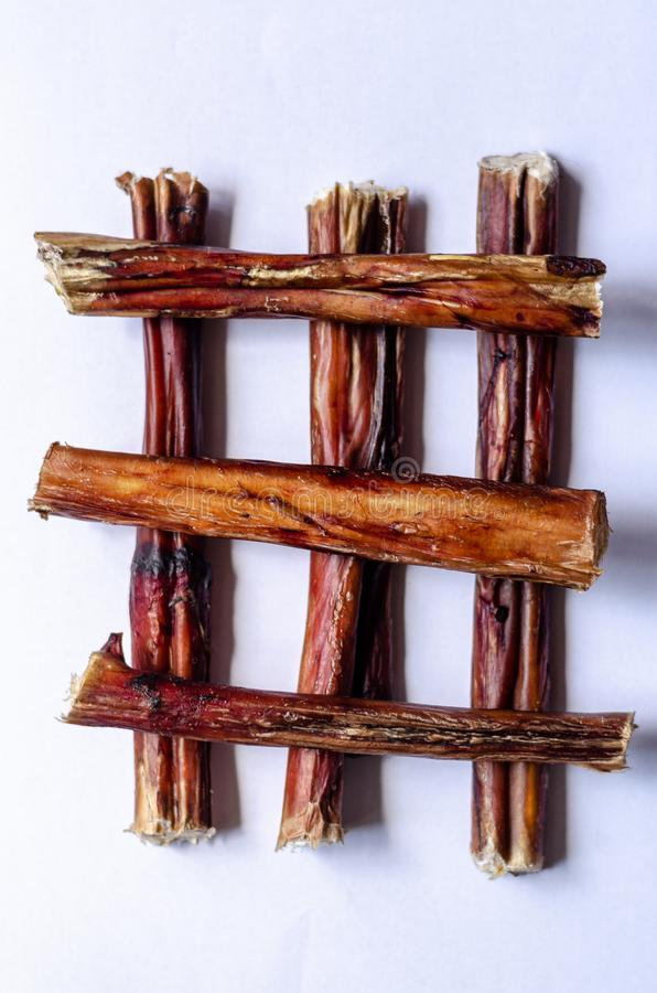 Six bully sticks. Dried bull pizzle regular for pets. Stacked perpendicular to each other. White background. Shooting from above. royalty free stock images