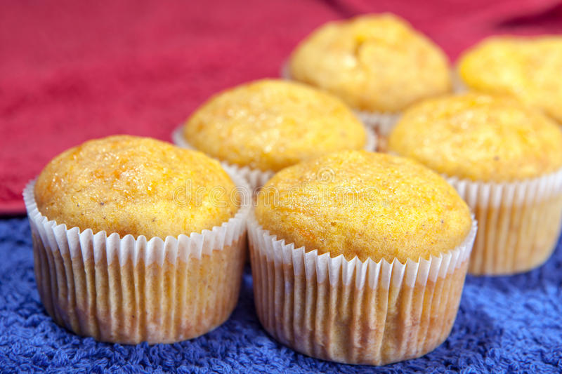 Six cupcakes on kitchen towels stock image