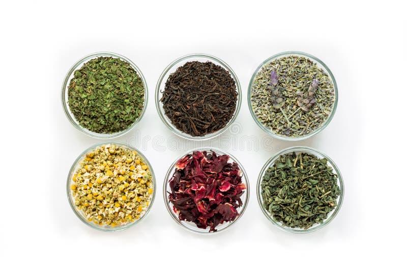 Six cuvettes avec différentes feuilles de thé d'isolement sur le fond blanc images libres de droits