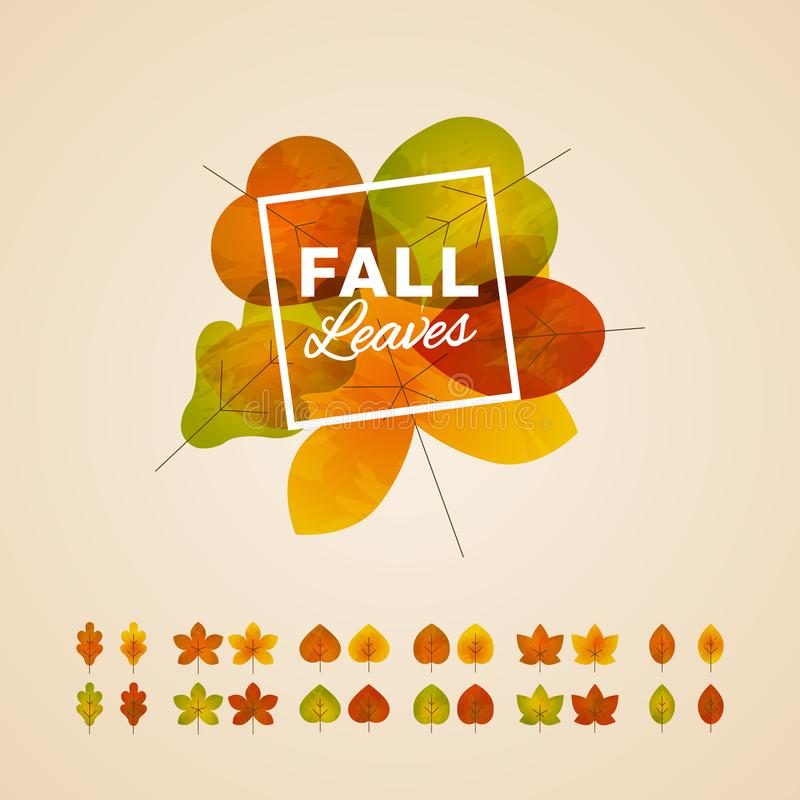 Six different types of fall leaves template. Each type has four different color. Easy to use for your design royalty free illustration