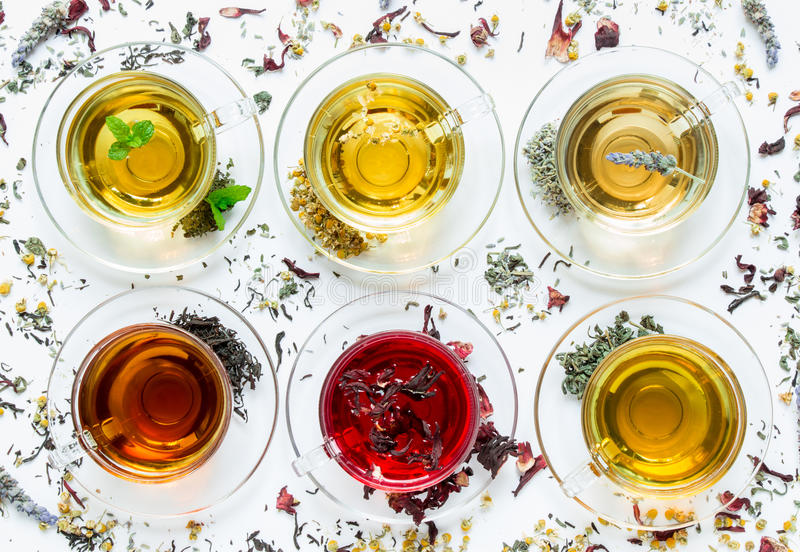 Six different types of tea prepared in the cups. stock photos