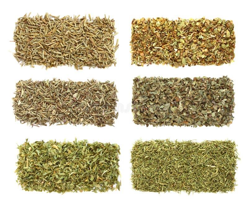 Six dried herbs in rows. Rosemary, Oregano, Thyme, Basil, Parsley, Dill royalty free stock photo