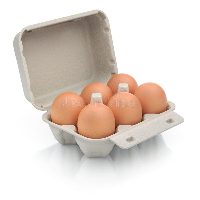 Six eggs in a carton package. 3D illustration of eggs in a carton package vector illustration