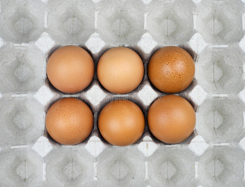 Six eggs in paper tray royalty free stock photos