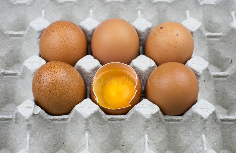 Six eggs in paper tray stock photos