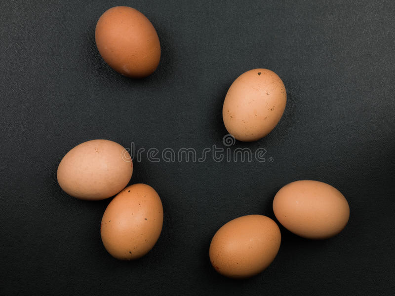 Six Fresh Free Range Organic Hens Eggs royalty free stock image
