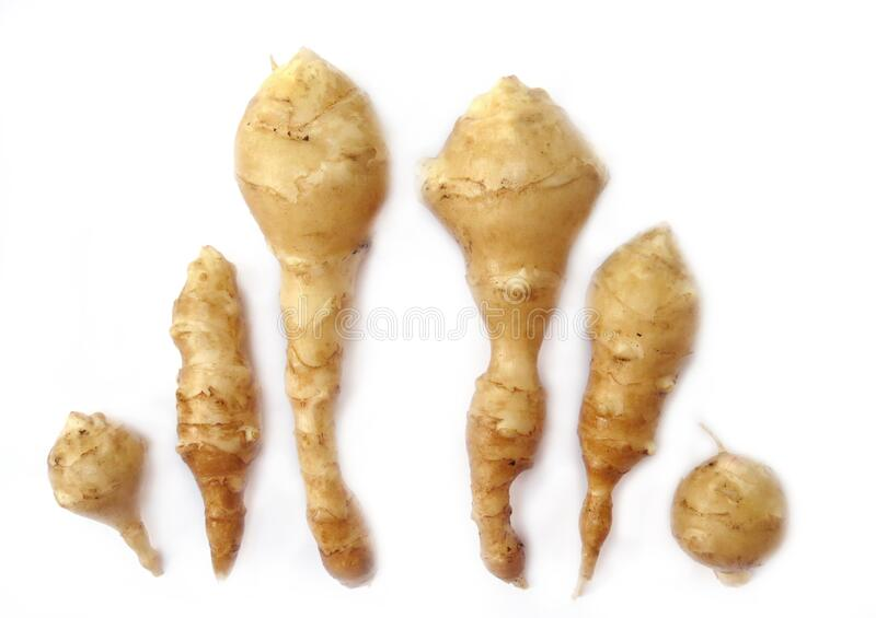 Six home grown topinambours stock images