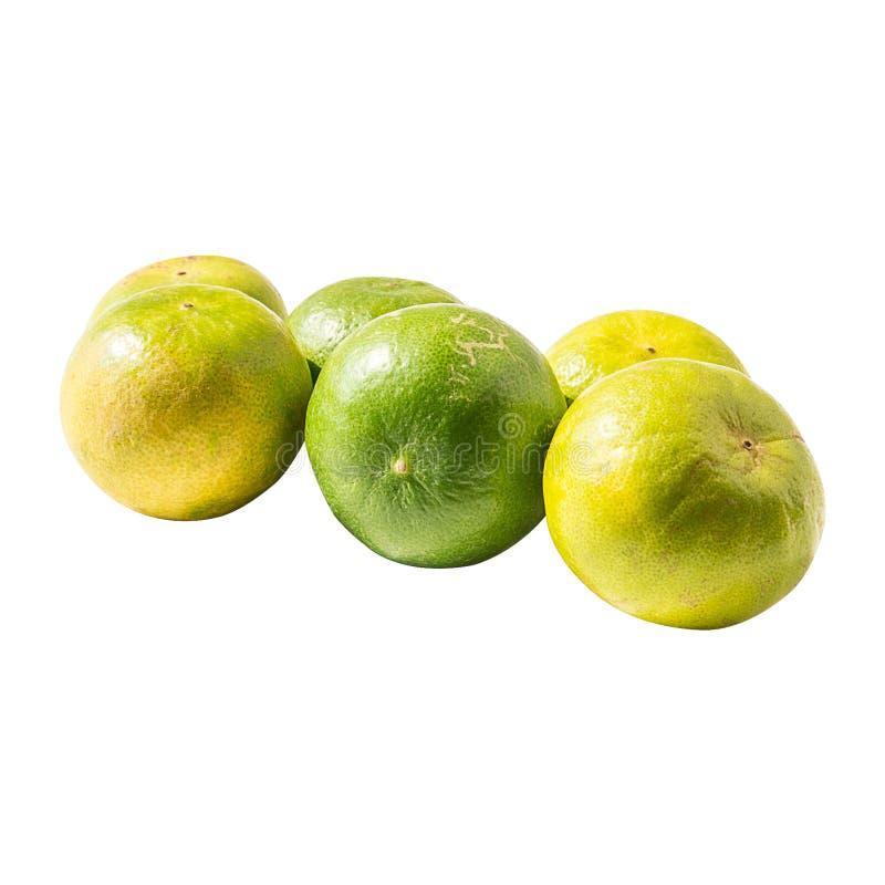 Six lemons isolated on a white background royalty free stock photo