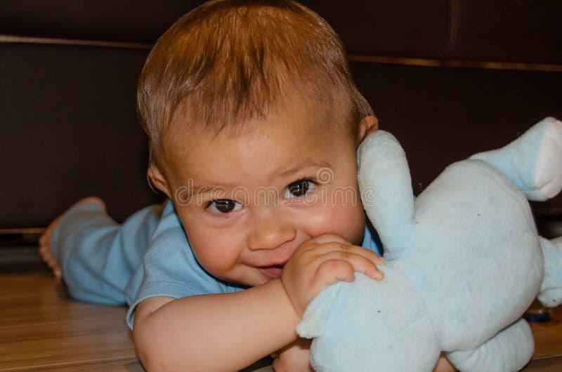Six mois mignons de b?b? gar?on jouant avec le nounours bleu concernent le plancher, faire ses dents et le premier concept de d?v photographie stock libre de droits