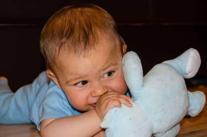 Six mois mignons de b?b? gar?on jouant avec le nounours bleu concernent le plancher, faire ses dents et le premier concept de d?v image libre de droits