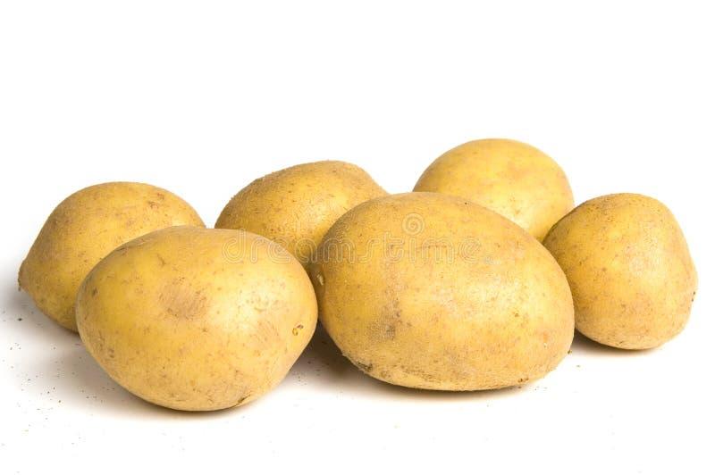Six potatoes stock images