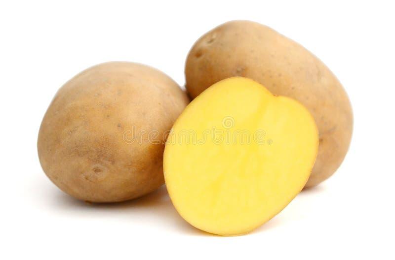 Six potatoes. Close up of potatoes on white background stock photos