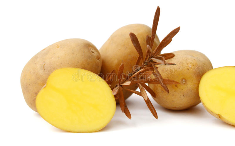 Six potatoes. Close up of potatoes on white background royalty free stock images