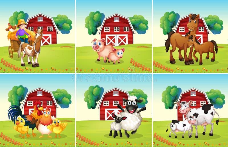 Six scènes avec des animaux à la ferme illustration libre de droits