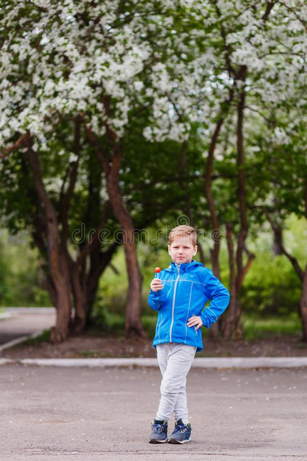 Six-year-old boy in full-length holding a Lollipop in the hands of a spring near a blossoming Apple tree. Spring bloom royalty free stock image