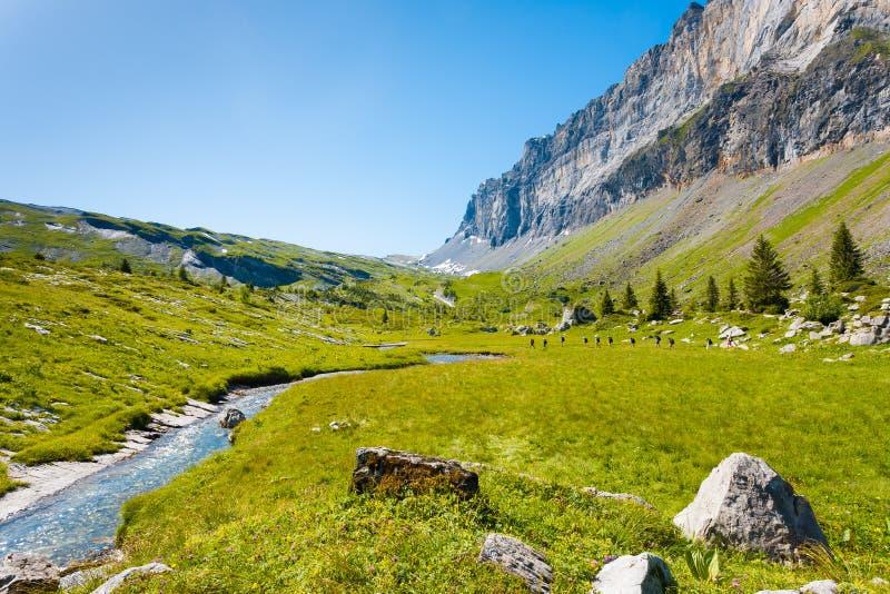 Sixt Fer ein Nationalpark H Cheval-Alpen-Frankreichs lizenzfreies stockfoto