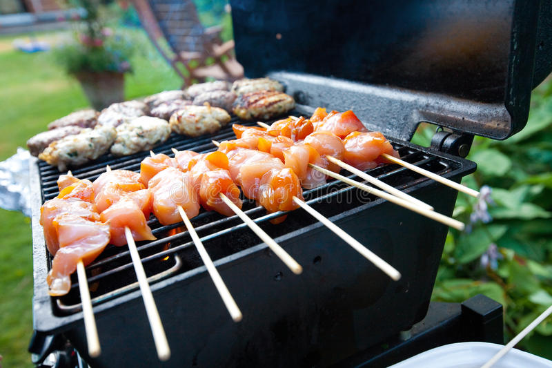 Download Sizzling Burgers And Chicken Kebabs Stock Photo - Image: 18335062