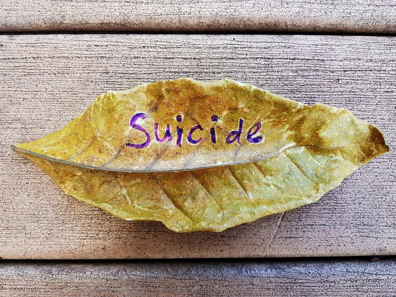 Självmord som är skriftlig på bladet arkivfoton