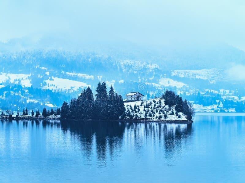 Sjö Colibita nära Bistrita - Rumänien royaltyfri fotografi