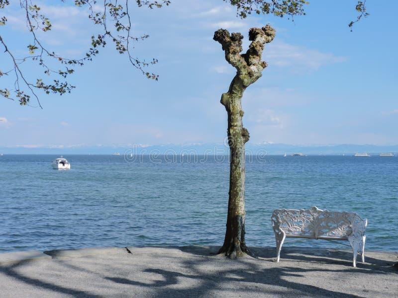 Sjö Constance med ensamma stolar och träd royaltyfria bilder