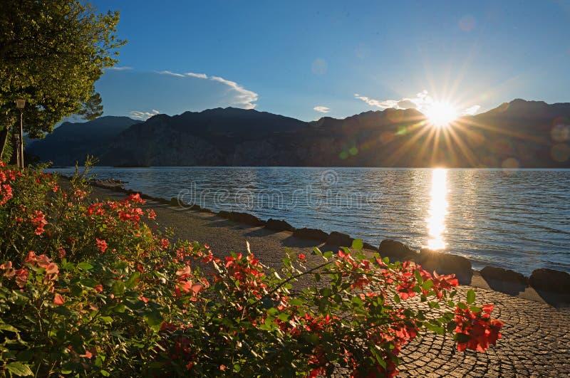 Sjö för Lakesidepromenadgarda med den rosa blomsterrabatten på solnedgången royaltyfria bilder