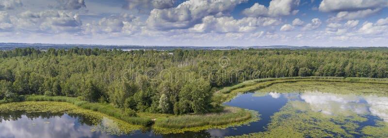 Sjö för sommartid och gräsplanskog, vitmoln över blå himmel in arkivbilder
