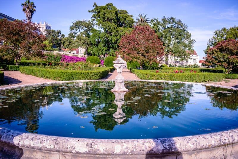 Sjö i den Ajuda botaniska trädgården, reflexion av vegetationen - Lissabon PORTUGAL royaltyfria bilder
