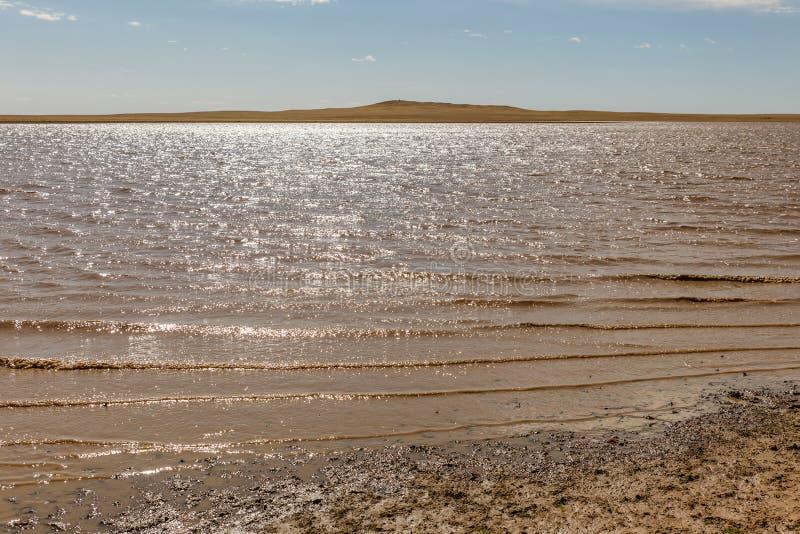 Sjö i den mongolian stäppen arkivbild