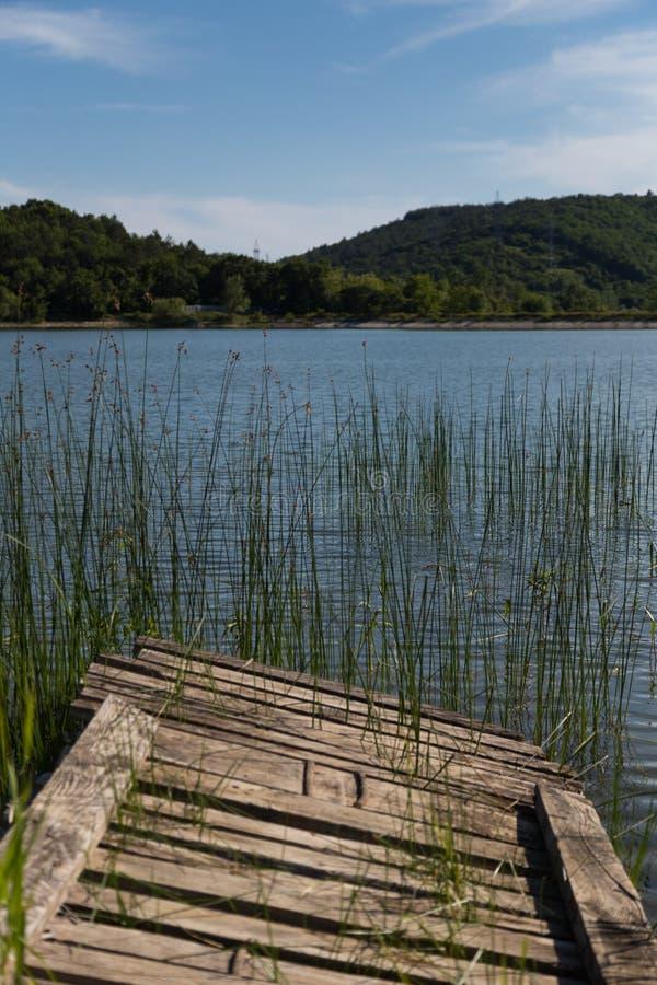 Sjö i Gelendzhik Krasnodar region Ryssland 21 05 2016 arkivbilder