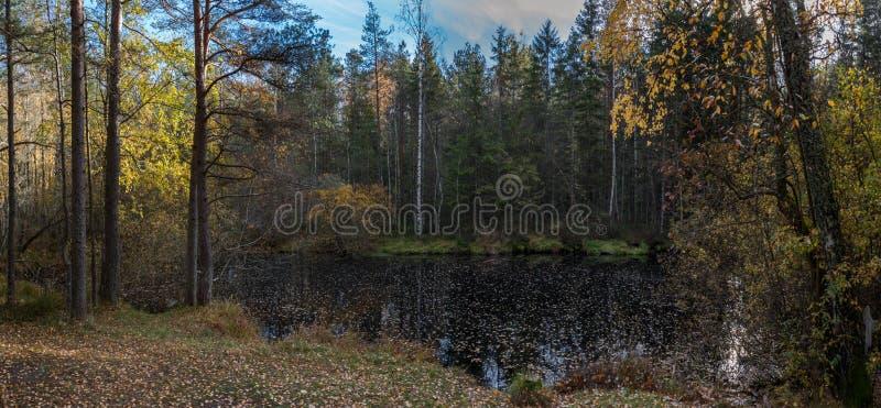 Sjö i höstskog royaltyfria foton