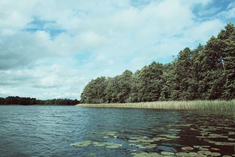 Download Sjö i Lettland arkivfoto. Bild av park, säsong, klimat - 78726384