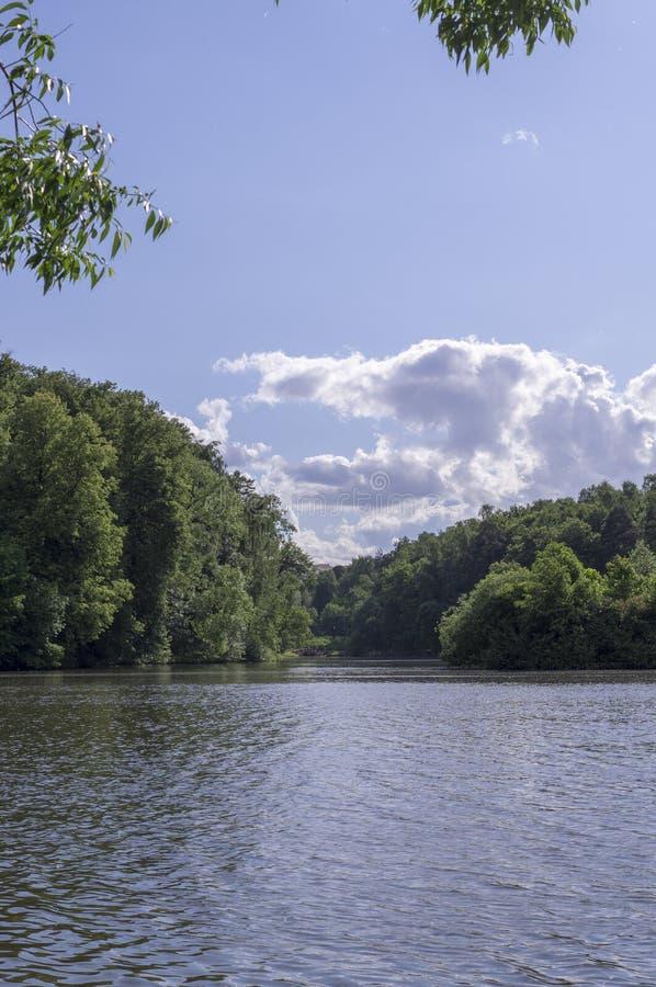 Sjö i skogen på den soliga sommardagen natur s?songer arkivbilder