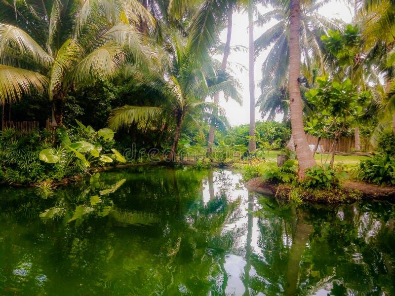 Sjö i Thailand Rayavadee royaltyfri fotografi