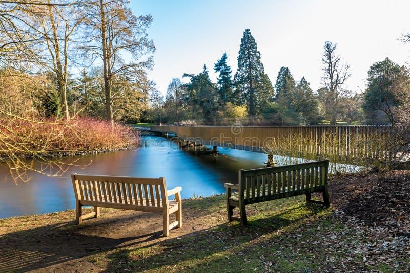 Sjö i vintern i Kew trädgårdar, London royaltyfria bilder