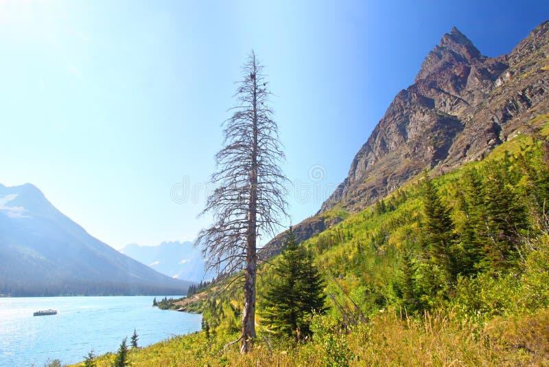 Sjö Josephine Glacier National Park royaltyfria foton