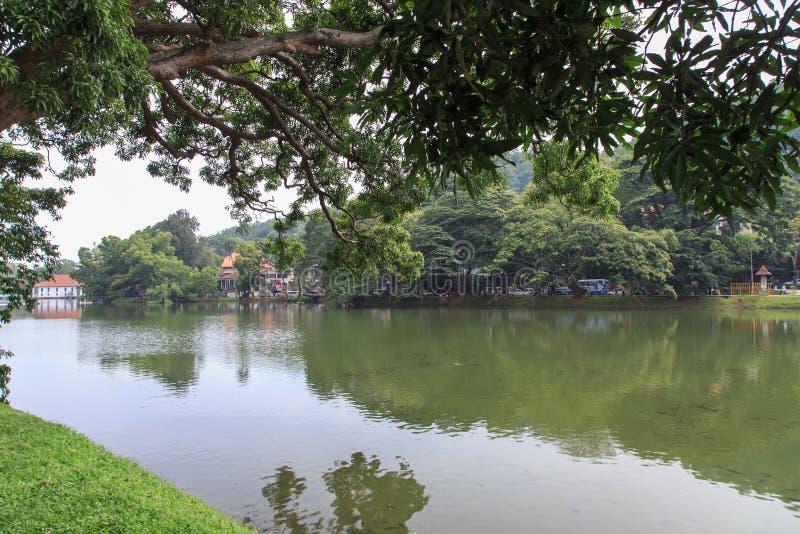 Sjö Kandy - Sri Lanka royaltyfri fotografi