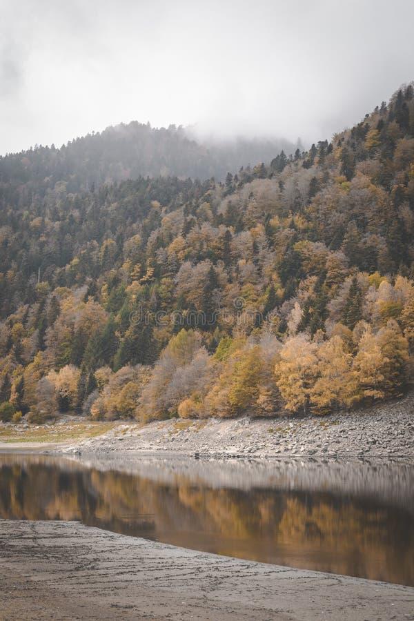 Sjö Kruth-Wildestein i Vosges med låg waterlevel och höstliga träd på berg mörka lynniga himlar royaltyfri fotografi