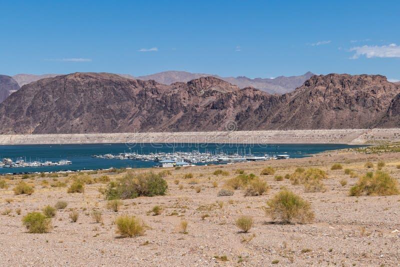 Sjö Mead Nevada Shoreline royaltyfria bilder
