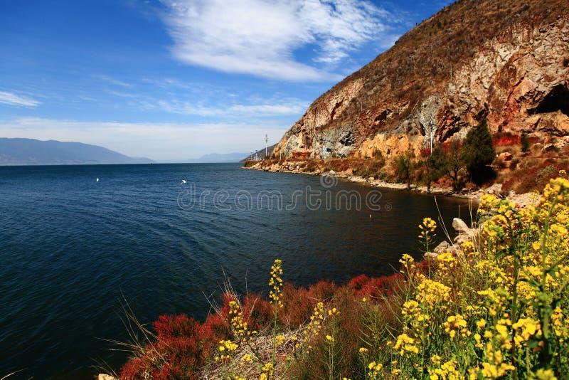 Sjö med blommor och berget fotografering för bildbyråer