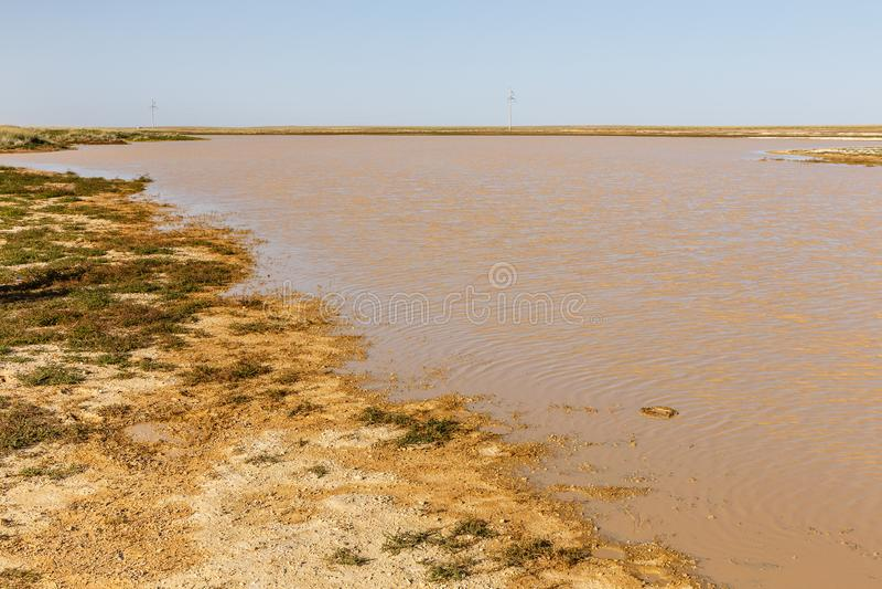 Sjö med smutsigt vatten i den mongolian stäppen arkivfoto