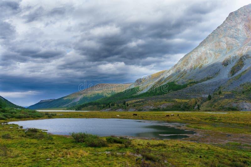 Sjö mellan berg i bakgrunden av stormhimlen arkivbild