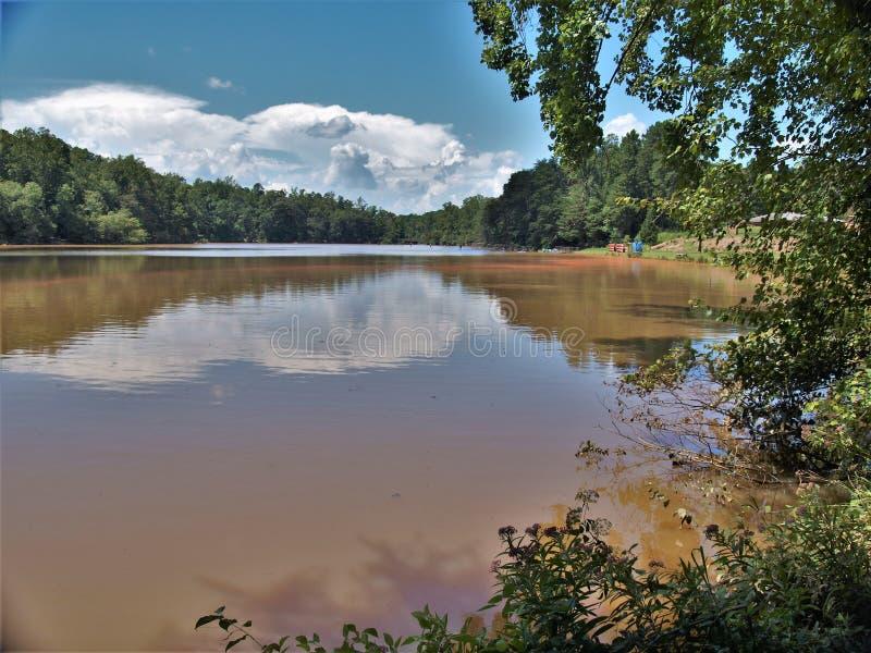 Sjö Norman State Park i North Carolina fotografering för bildbyråer