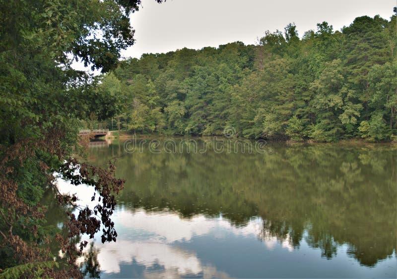 Sjö Norman State Park i North Carolina royaltyfria bilder