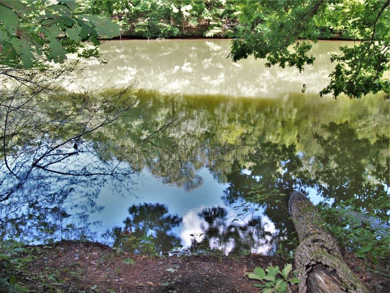 Sjö Norman State Park i North Carolina arkivfoto
