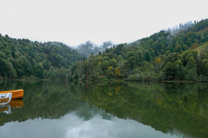 sjö och dimmig skog i berg i en regnig dag royaltyfria bilder