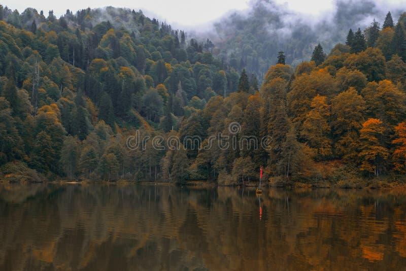 sjö och dimmig skog i berg i en regnig dag arkivbild