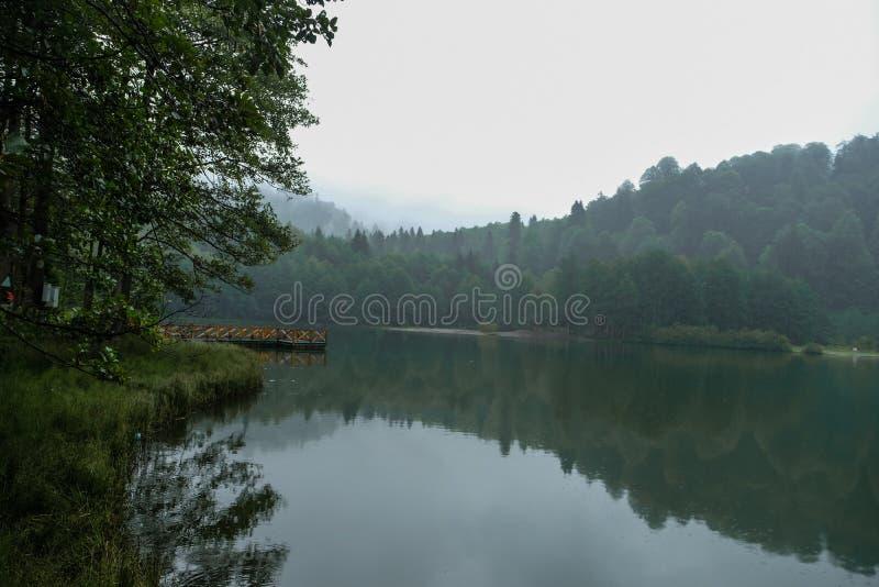 sjö och dimmig skog i berg i en regnig dag royaltyfri fotografi