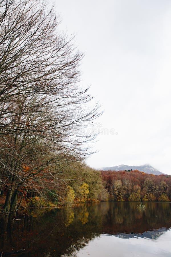 Sjö och lock i Autumn Forest arkivfoton