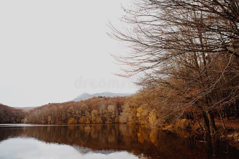 Sjö och lock i Autumn Forest royaltyfri bild